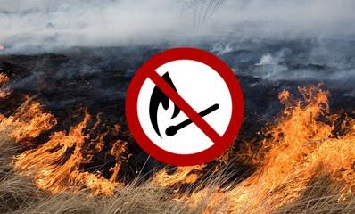 Про заборону спалювання сухої трави — Вінницька районна державна  адміністрація